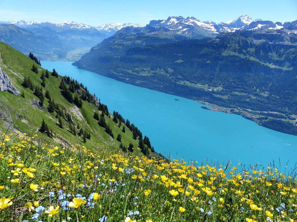 Augstmatthorn Hiking Lake Brienz Switzerland