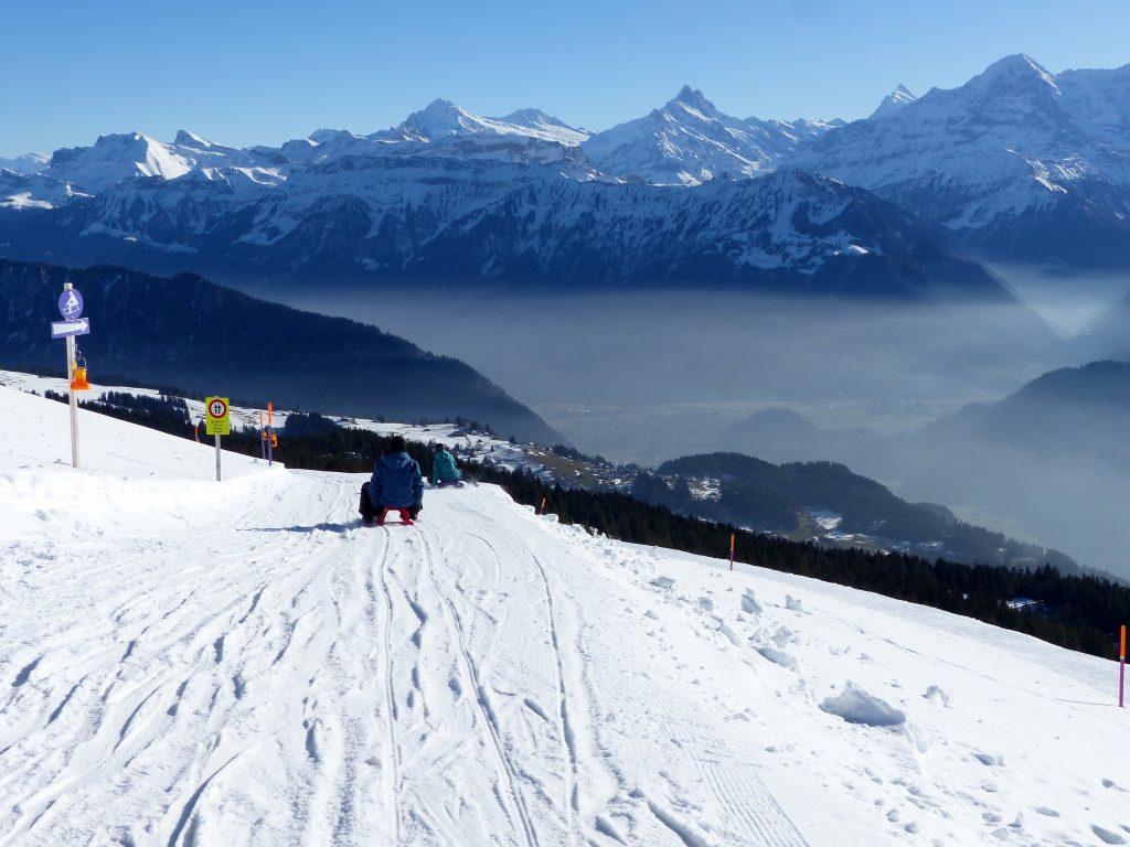 Niederhorn sledging Switzerland