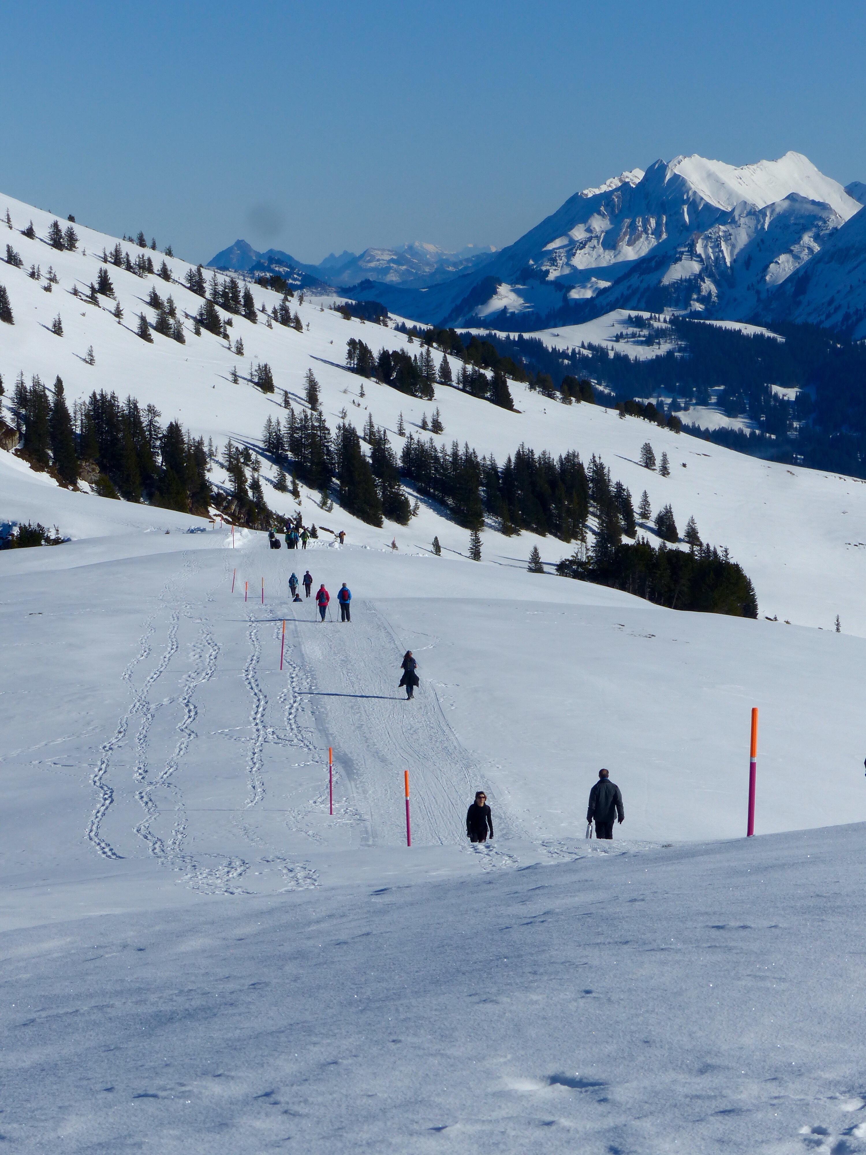 Winter walk Niederhorn Switzerland