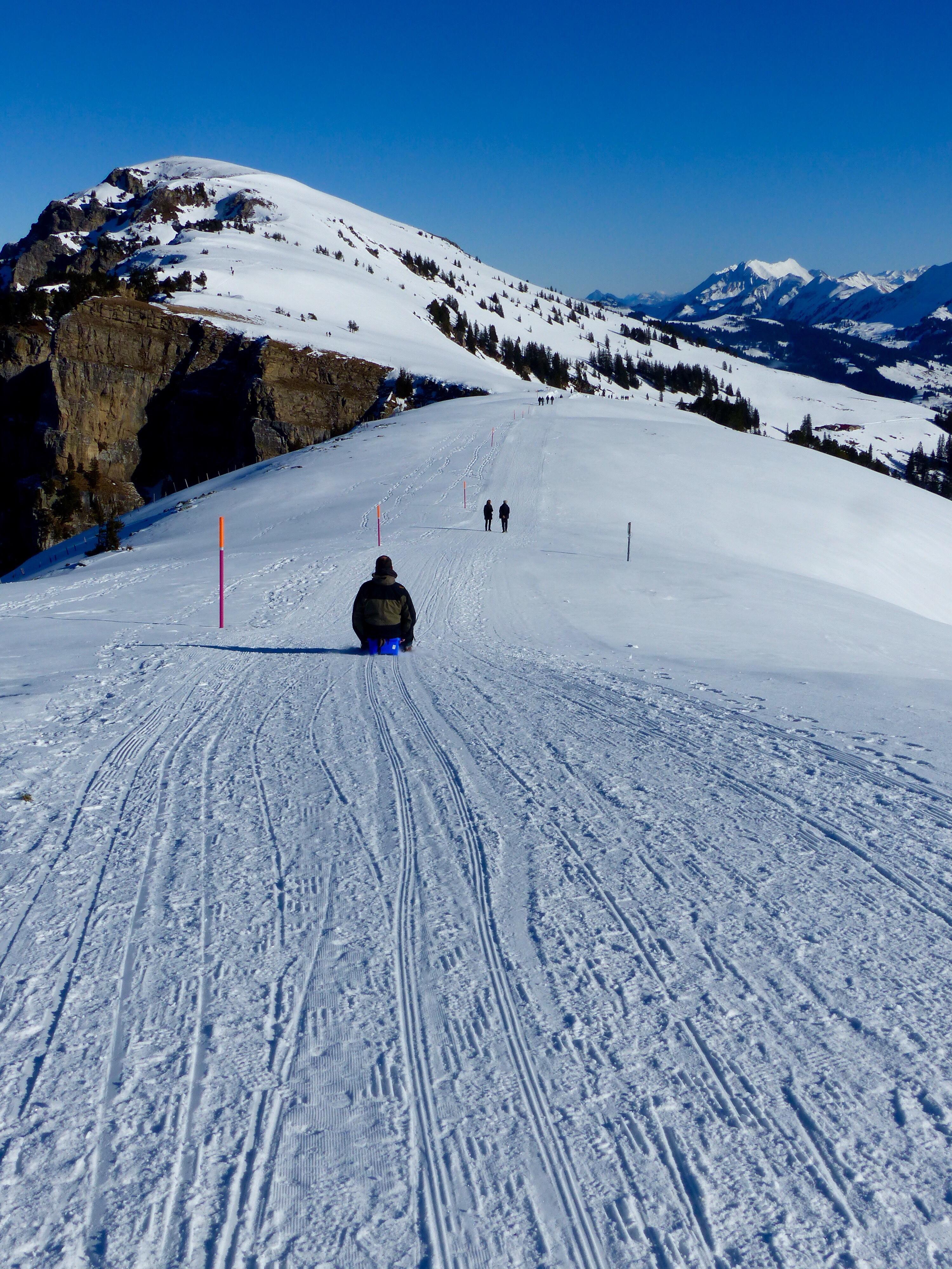 Winter walk sledging Niederhorn Switzerland